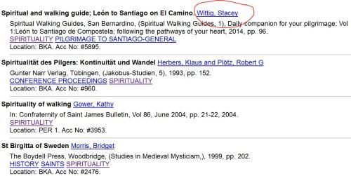 CSJ-Stacey-Wittig-Camino-Spirituality